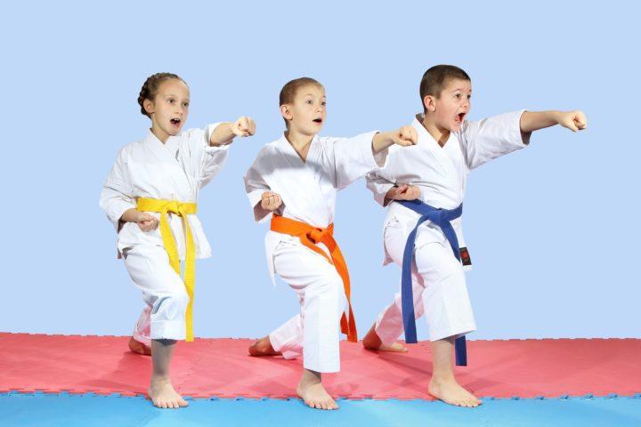 Cara Berlatih Teknik Pukulan Karate