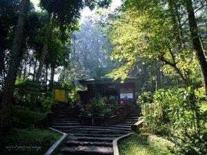 Tempat Wisata Tawangmangu Jawa Tengah